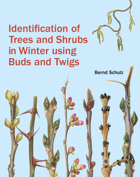 book cover of Identification of Trees and Shrubs in Winter using Buds and Twigs, non-fiction book PR & publicity, READ Media